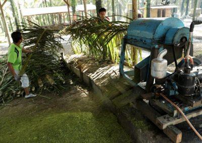 Kembangkan Pupuk Organik, Desa Dataran Kempas Mampu Hapus Angka Pengangguran
