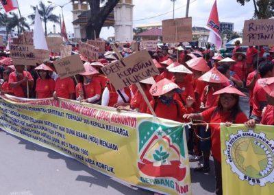 Petani Simalingkar, Antara Derita dan Perjuangan